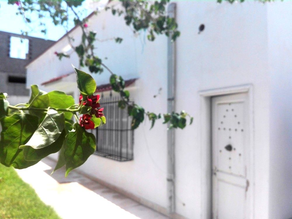 villa avec jardin à Hammamet nord y